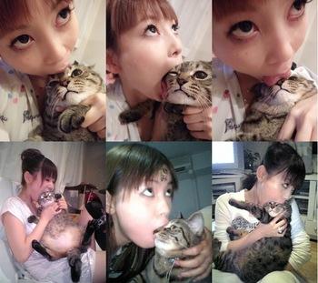 しょこたん 猫.jpg